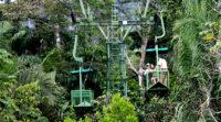 Rainforest Aerial Tram Tour – Costa Rica