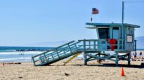 Favorite 5 Things to do in Venice Beach