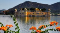 Favourite 5 Things To Do in Jaipur