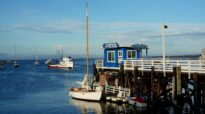Favorite 5 Things to do in Monterey